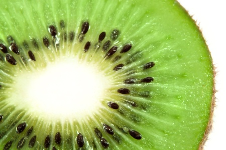 Close up on part of a cross section of fresh kiwi fruit with small portion of white background photo