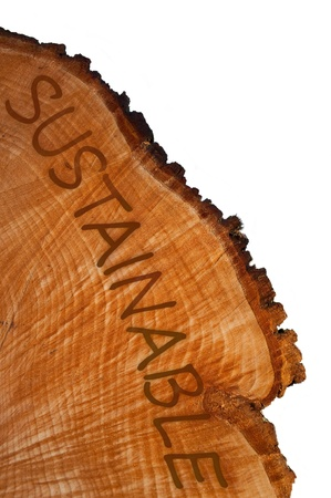 Cross section of tree trunk with word Stock Photo - 10654237