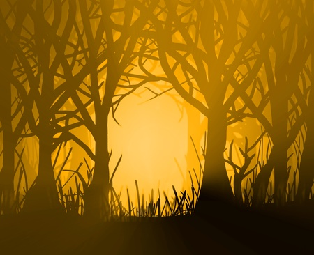 barren: Illustration depicting early morning abstract forest scene with silhoutted trees and strong golden backlight.