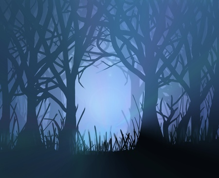 mystery woods: Illustration depicting spooky dark forest scene at night with silhoutted trees and eerie misty backlight.