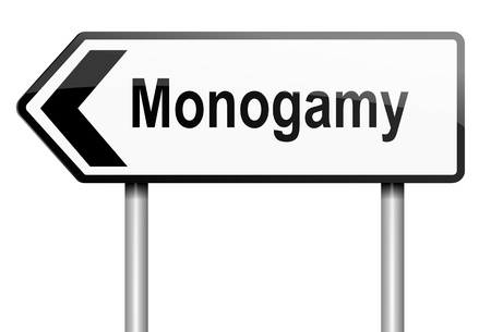 Illustration depicting a road traffic sign with a monogamy concept. White background. Stock Illustration - 14103156