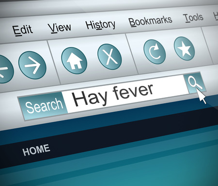 hay fever: Illustration depicting a screenshot of an internet search with a Hay Fever concept.