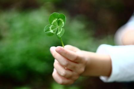 niño abrigado: Trébol de cuatro hojas en la mano de un niño