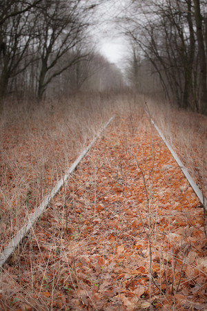 Abandoned railroad track through a dark autumn forest photo