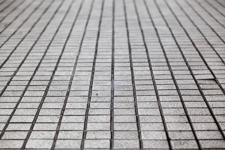 Detail of a patterned walkway
