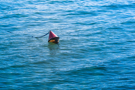 demarcation: Red colored chained conical buoy floating at the water surface