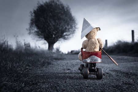 vintage teddy bears: A teddy bear drives by a roller-skate vehicle on a small dark road at the countryside to the horizon light
