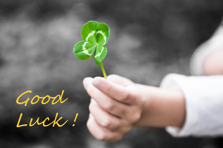 textual: A child hand present a four-leaved green clover leaf as a gift (color key with textual message GOOD LUCK!) Stock Photo