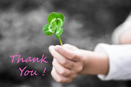 ni�o abrigado: Una mano del ni�o presenta una hoja de tr�bol verde de cuatro hojas como un regalo (tecla de color con el mensaje textual GRACIAS!) Foto de archivo