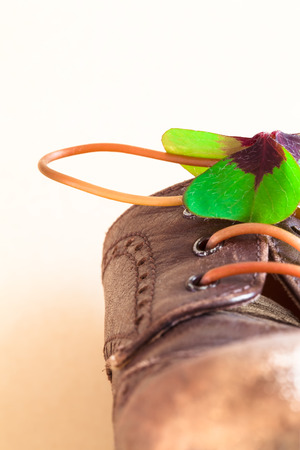 a stem here: Detail of a leather shoe with lucky clover leaf and flexible stem as shoelace