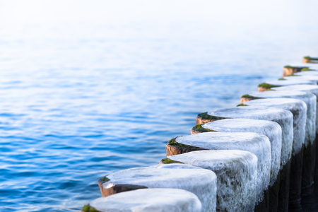 Row of frozen wooden posts in winter at Baltic Sea (copy space) Stock Photo