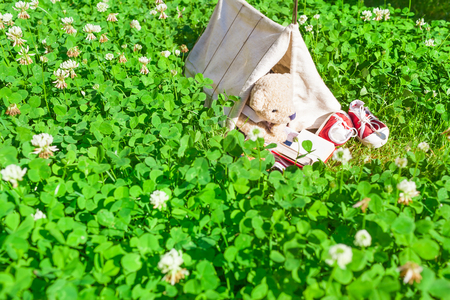 Small miniature tent at meadow of clover grass, cute little teddy bear inside, enjoy camping at summer day by reading book (copy space)