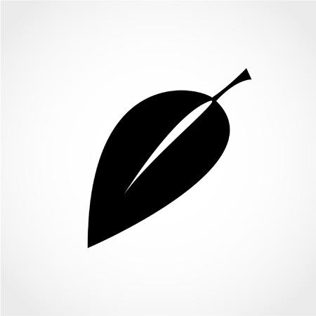 Fresh natural product symbol. Leaf sign Icon Isolated on White Background