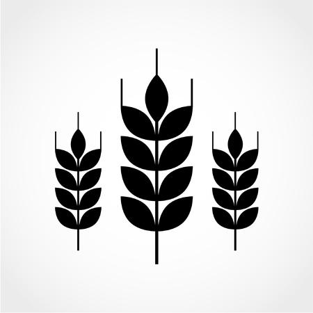 Wheat Icon Isolated on White Background Çizim