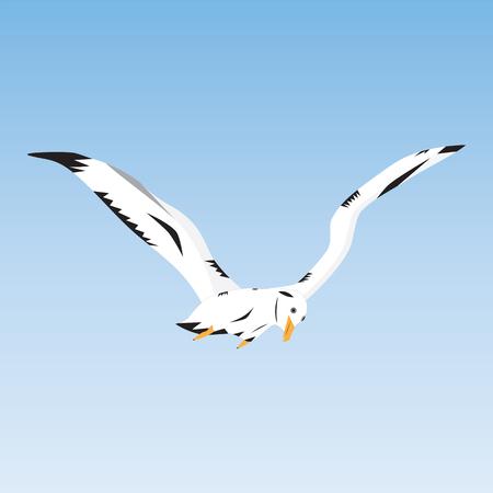 Sea bird in the sky. Seagull. Albatross.