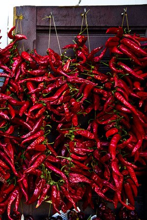 Red Spicy Hot Chili Peppers Drying On A White Wall