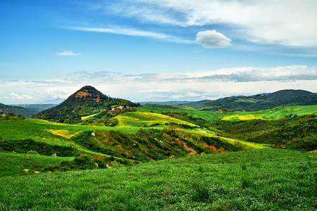 sonniger Tag in Bolgheri. Landschaftsansicht. Toskana, Italien, Europa. Viel grünes Gras und gelbe Blumen, die mit blauem Himmel gut aussehen