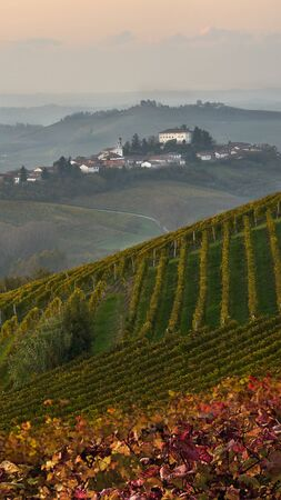beautiful Italian landscape -evening over Piemonte hills with vineyards with little village on the top of the hill