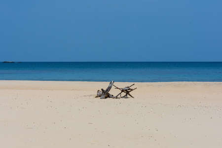An empty white sand beach with drift wood decoration and calm sea.