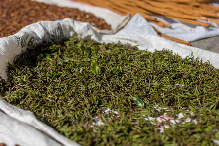 Cloves and other spices drying out in the street in the midday sun. Stock Photo