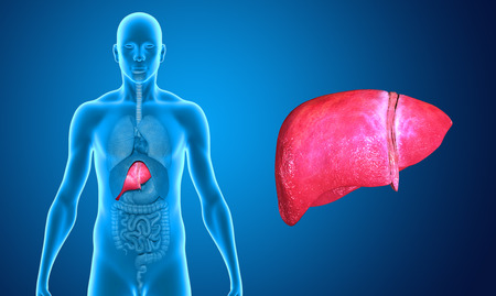 liver cancer: Wide liver