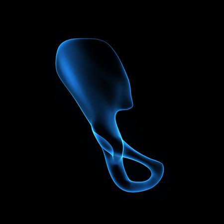 femoral head: Pelvic hip Stock Photo