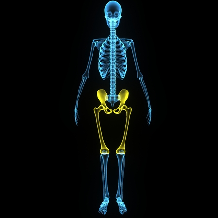 x ray image: Pelvic hip Stock Photo