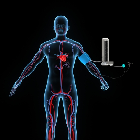 Blood Pressure in human body photo