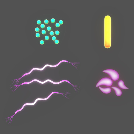 bacterial: Bacterial of different shapes Stock Photo