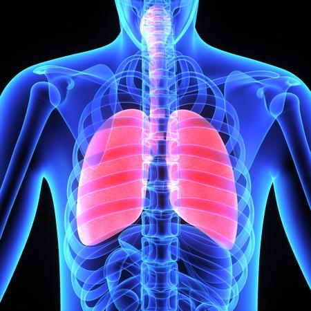 persona enferma: Pulmones en 3d