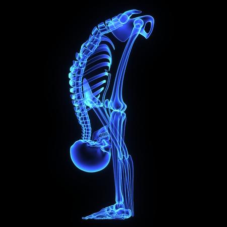 rheumatism: Joints