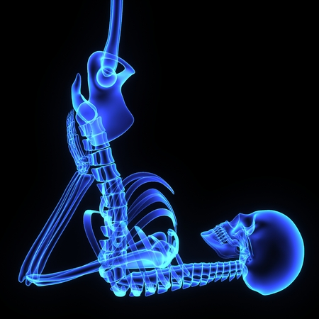 Hip joint photo