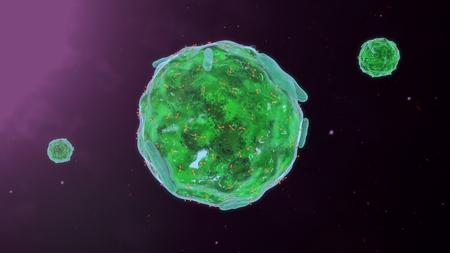 肥満細胞 写真素材 - 61614633