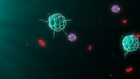 immune: Bacteria attacking the immune system