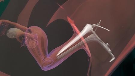 procreation: In vitro fertilization Stock Photo