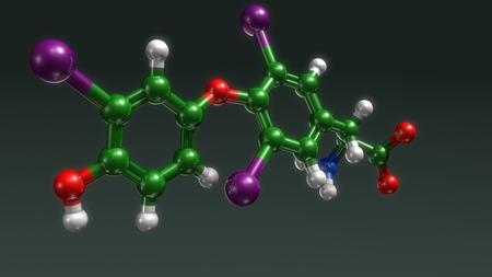 Triiodothyronine perspective