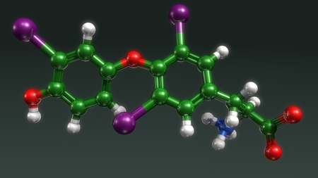 Triiodothyronine front