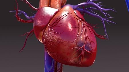 Circulatory System Infection closeup Stock Photo