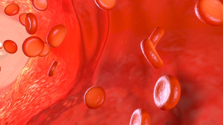 Blood Flow back Zdjęcie Seryjne