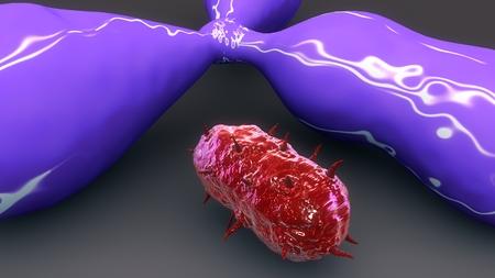 Antigene & Bacteria closeup
