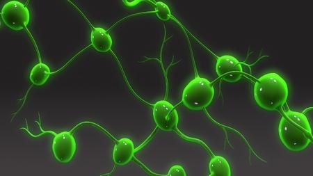Gros plan des ganglions lymphatiques