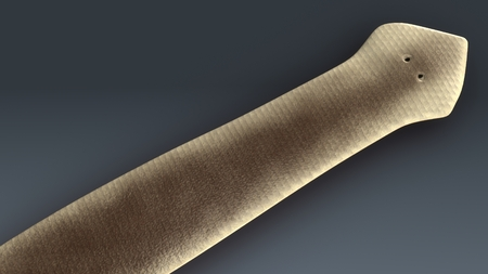 Dugesia(planarian) フロント 写真素材