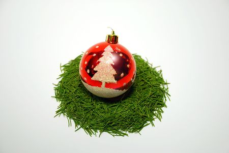 Red Christmas ball in nest of pine tree needles ,isolated on white