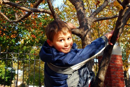 Smiling 6 year-old boy, climbing up  tree in the park.autumn