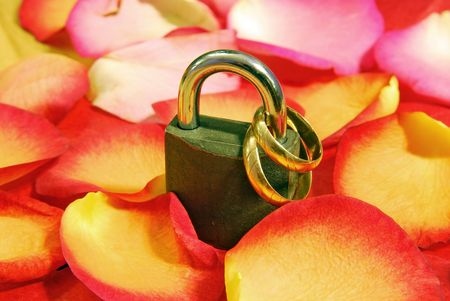 Lock with two wedding rings on bed of flowers .Valentine day related photo