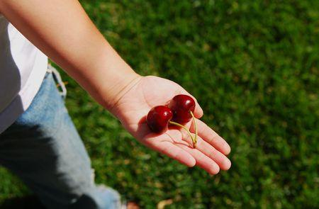 Cherrys in a little boy Hand