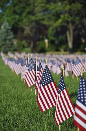 United we stand.Hundreds of US flags  Stock Photo