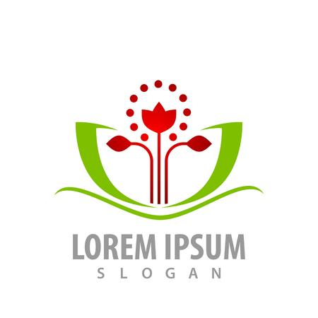 Lotus flower stalks logo concept design. Symbol graphic template element