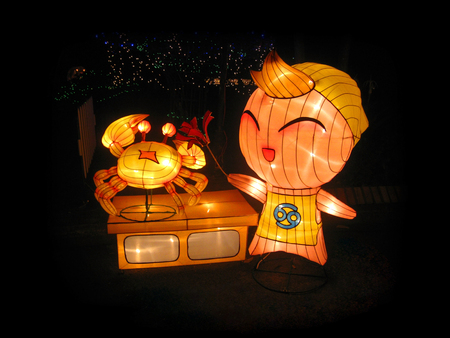 Decorate the variety lanterns in the night park