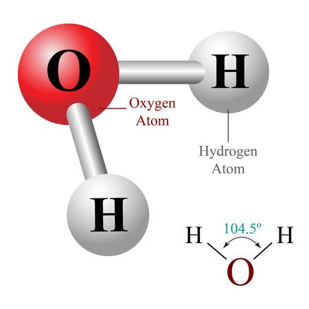 Illustrazione della molecola d'acqua H2O